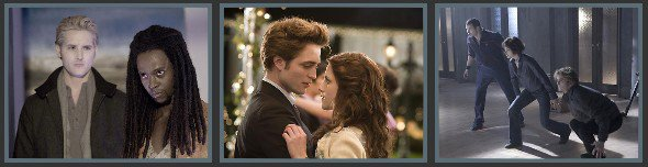 Twilight, Chapitre 1: Fascination - 2009