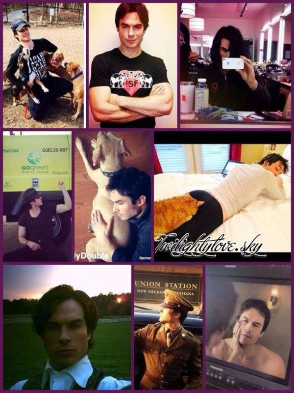 ~The Vampire Diaries~