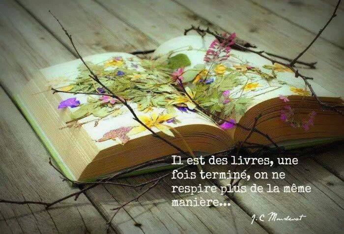 Citation du Jour..........