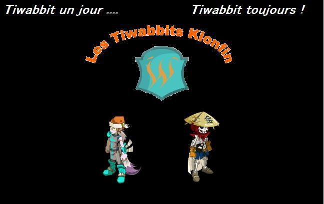 Blog desTiwabbitsKionfin
