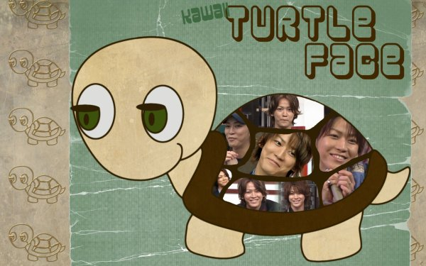Kawaii Turtle Face