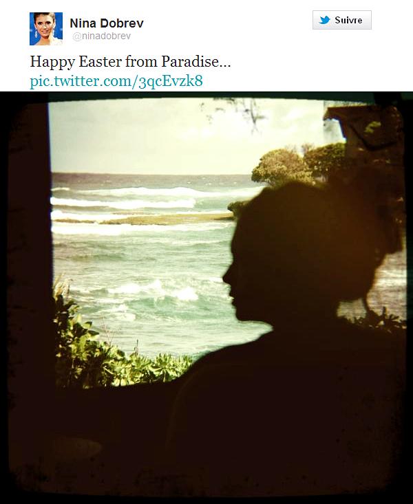 TWEETS/EVENTS/ENGAGEMENT Nina Dobrev a posté une photo d'elle sur son Twitter - Joyeuses Pâques du paradis - + Candice Accola présente au 3rd annual Elle Women Music + Torrey DeVitto engagée pour la cause animale !