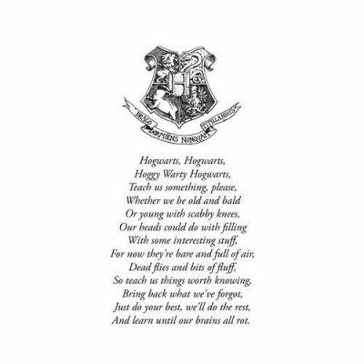 Bienvenue, bienvenue pour une nouvelle année a Poudlard, avant que le diner ne commence, j'aimerais vous dire quelques mots, les voici : Nigaud ! Grasdouble ! Bizarre ! Pinçon ! Je vous remercie!