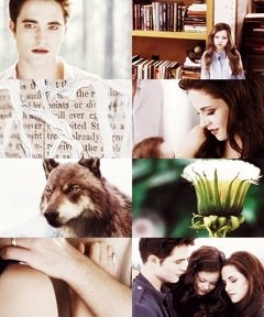 Montage photo Twilight 5