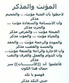 hassan et  mourad  dima  prince  et  noble ..................Je le veux je le veux je le veux