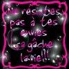 les-gaffeuses-du58