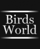 Birds-World