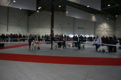 EXPO METZ 6 ET 7 NOVEMBRE 2010