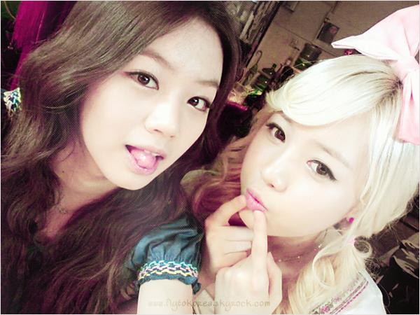 .Secret et T-ara sur le red carpet du Dream Concert..