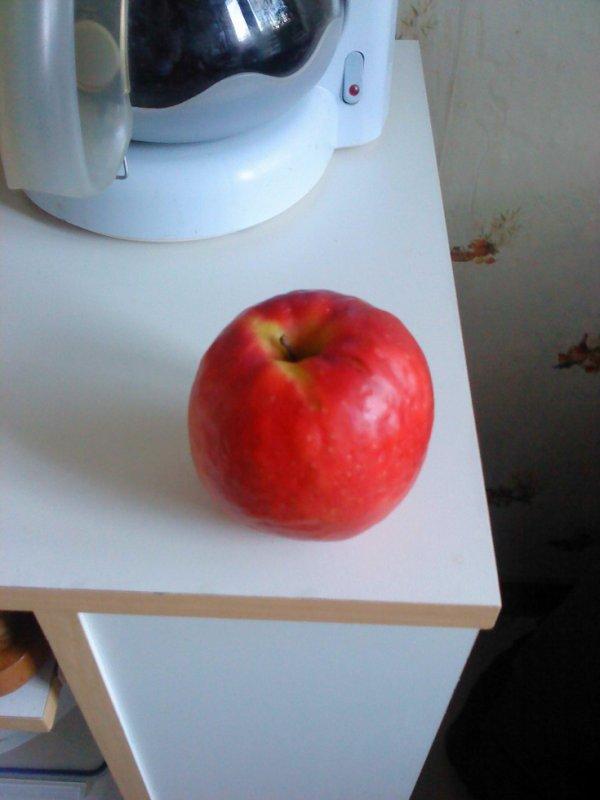 voici la pomme qui caché des pépin tout germé a l'intérieur