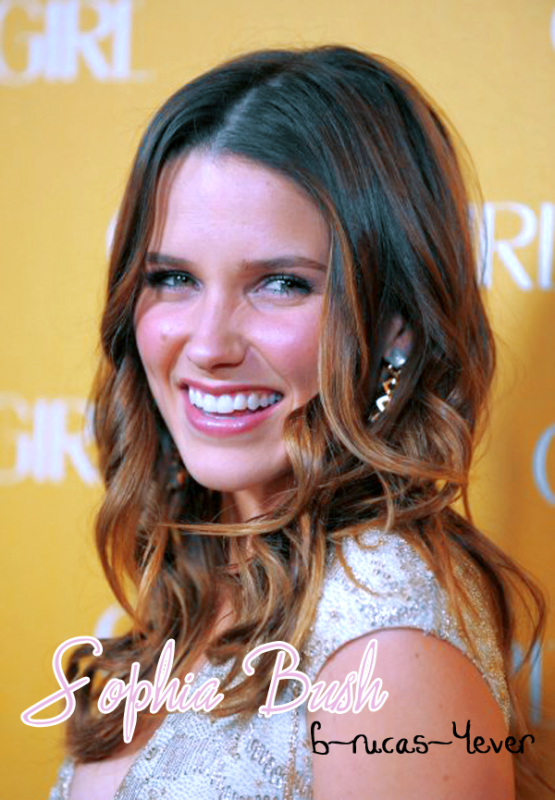 Biographie De Sophia Bush