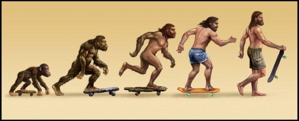 L'évolution ♥ ...