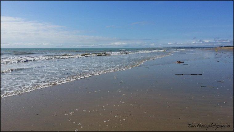 """""""Notre"""" plage de cet été"""
