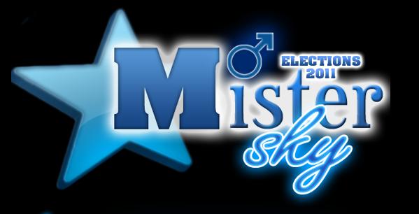 Les Candidats de Mister skyblog 2011