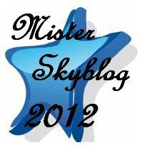 Mister Skyblog 2012
