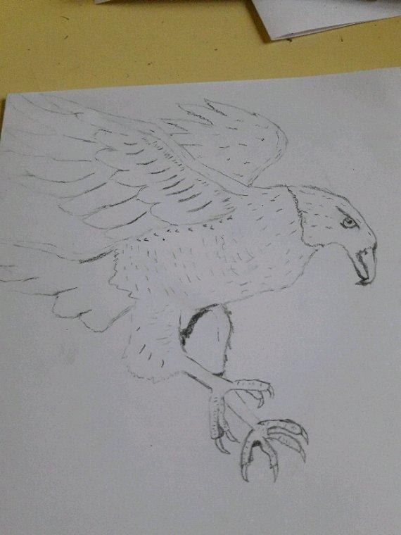 Mes dessins ( suite 2)