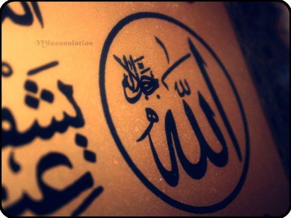 Toute les 3 secondes quelqu'un meurt, On compte, 1 2 3... Pas nous, 1 2 3 ... Pas nous, 1 2 3... Pas nous ... Jusqu'à notre tour. La mort ne prevint pas alors fais ton possible pour adorer Allah comme il se doi !