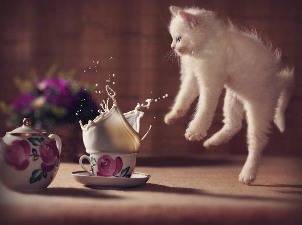 Ôlé le café ...