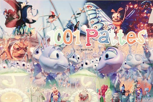 Films : 1001 pattes