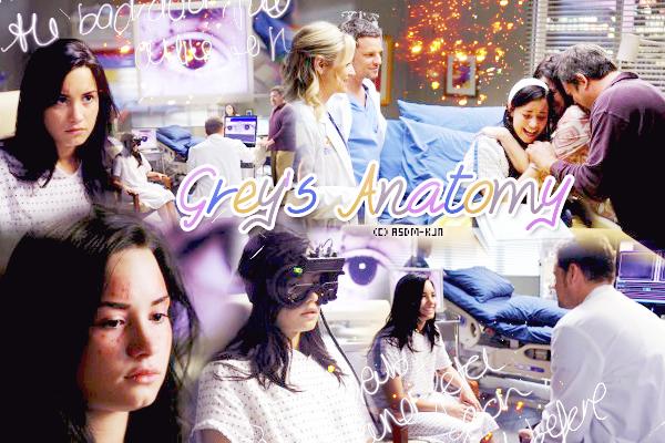 Série : Grey's Anatomy