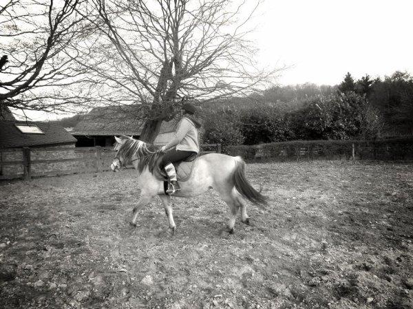 Tu dois te fondre dans ton cheval . Ne faire qu'un, jusqu'à sentir en toi le sol au bout de ses pieds. Alors tu deviens cavalier.