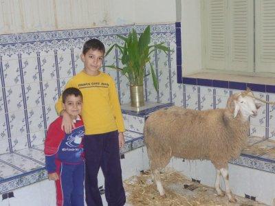 MOi & MEhdi & Le Kebch