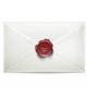 - Newsletter-