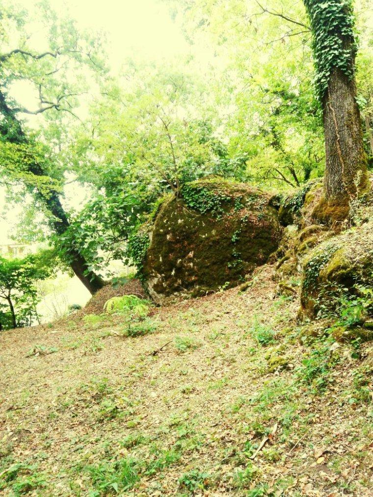 Promenade dans les bois de Monségur dans le Lot et Garonne