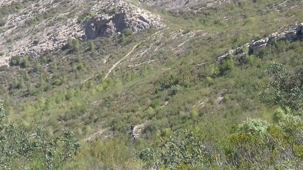 Point de vue depuis la Punta d'Aliga