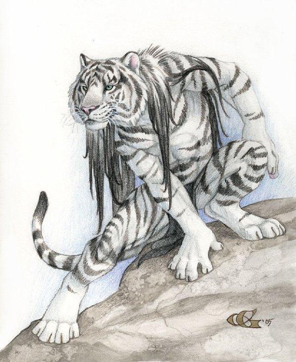 Les tigres-garous.