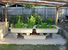 aquaponics- all you want to know about it