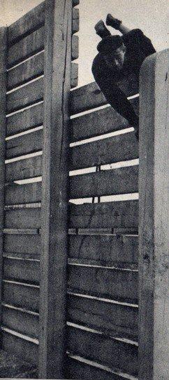 Art 1619 : C.A.P. MINEUR 1953 (2)
