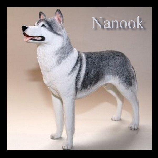 Nanook, le sage