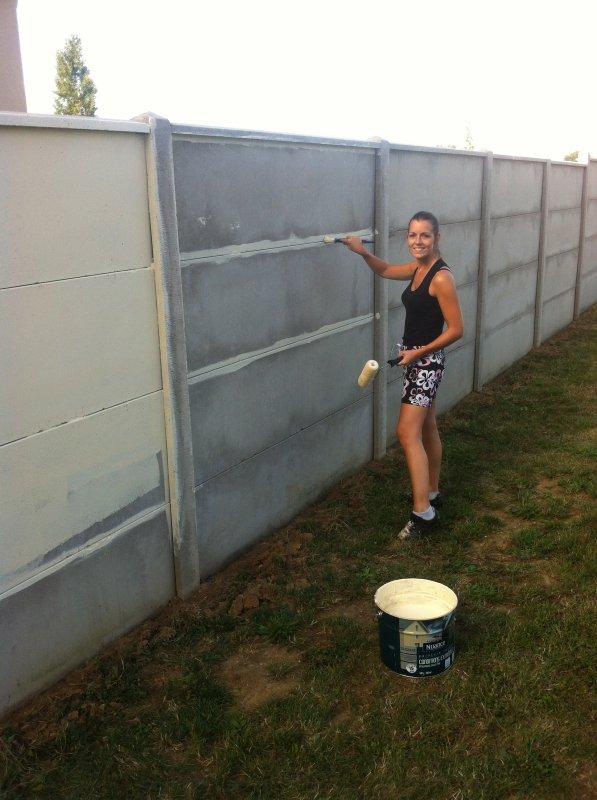 Populaire Peinture Mur Exterieur Couleur. Affordable Dcoration Mur Extrieur  LM53