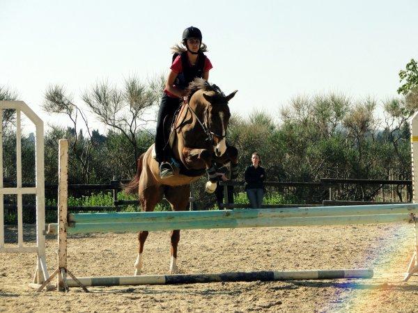 ♥  › Il faut une seconde pour remarquer un cheval, une heure pour l'aprécier, une journée pour l'aimer, mais il faut une vie pour l'oublier.