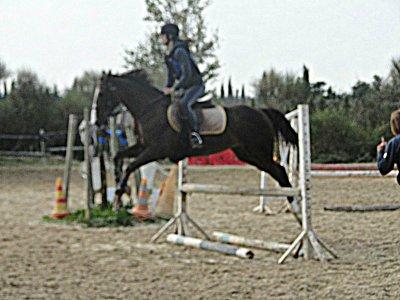 ♥ L'air du paradis et celui qui souffle entre les oreilles d'un cheval ♥