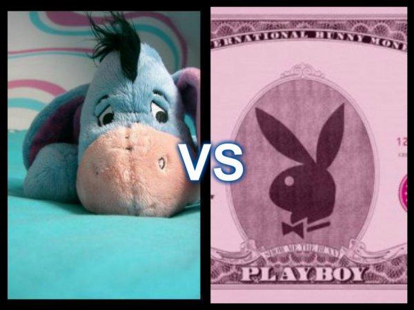 playboy vs bourriquet qui gagnera ?