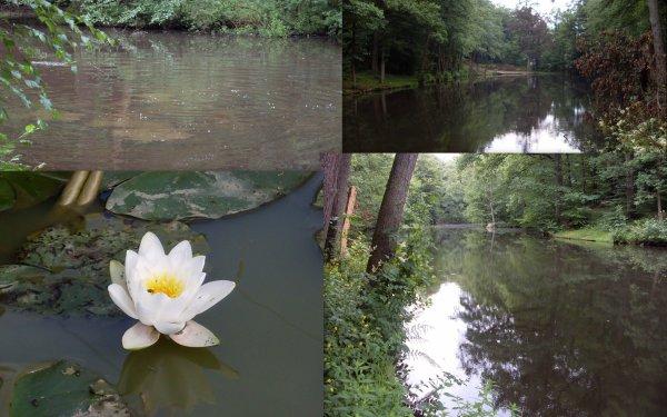 l'étang de la fraineuse a spa