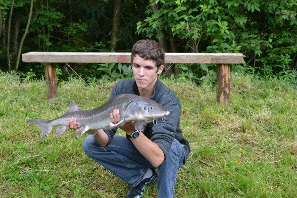 Que préférez_vous  la pêche ou la photo?