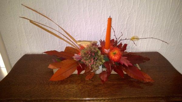 L'automne est rentré dans ma maison  !