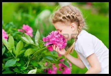 La joie ...comme un parfum à respirer !!