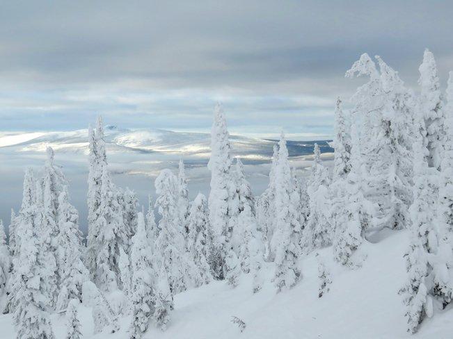 Paysages blanc de neige !!