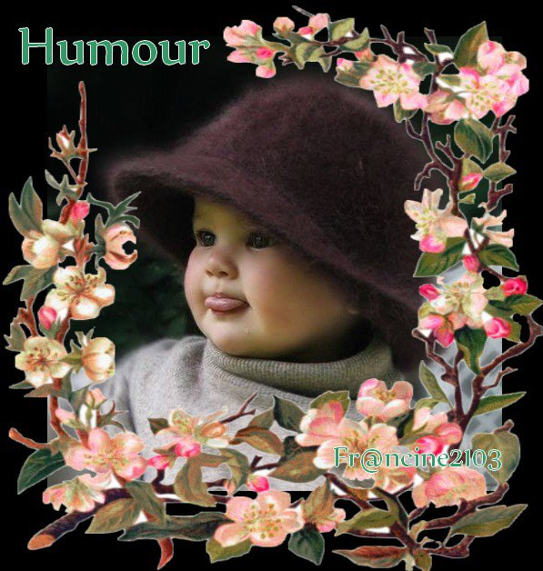 Humour (sourire)