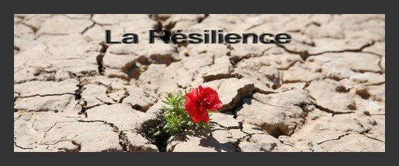 Résilience !!