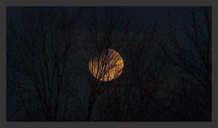 Pleine lune magnifique du 31janvier 2018