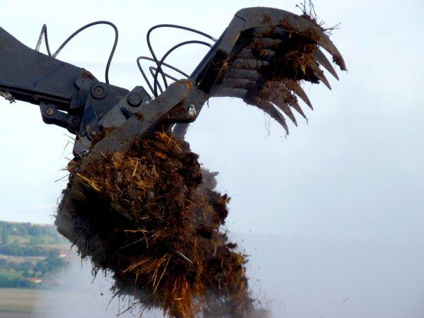 Epandage de fumier en limagne nord ( par deerehorsch )