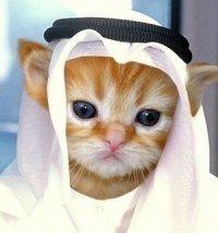 (。◕‿‿◕。)¡ Vous êtes arrivée à Arafat !(。◕‿‿◕。)