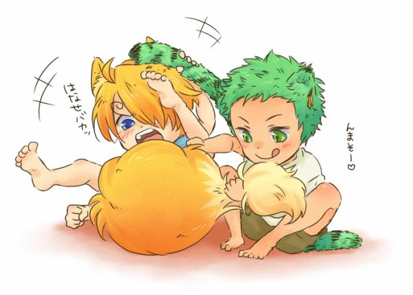 zoro & sanji (one piece)