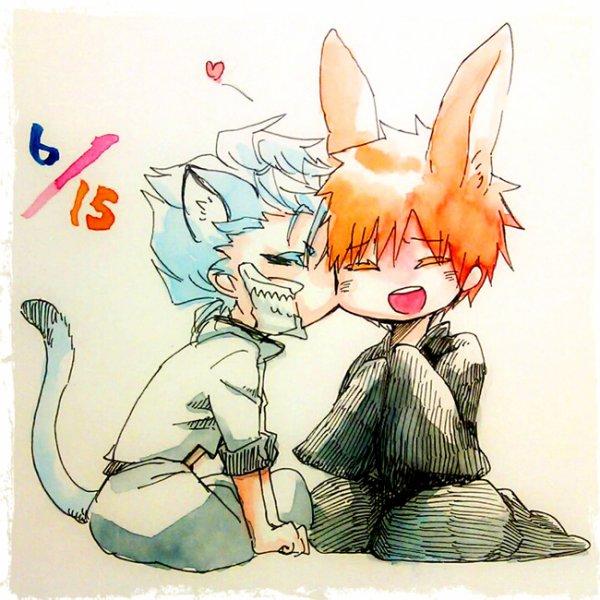 Grimmjow & Ichigo (Bleach)