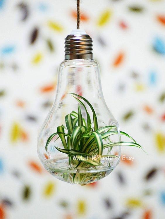 Recyclage des ampoules